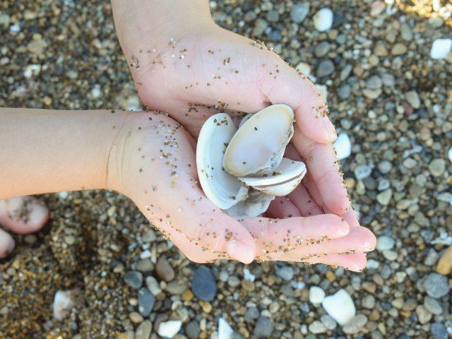 Kファミリー、波松海岸で釣りをする、の巻